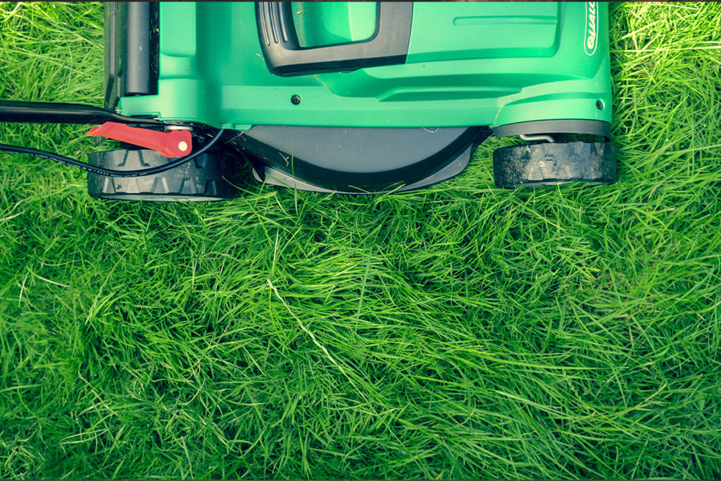 Lawn curb appeal